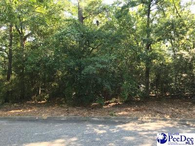 Residential Lots & Land For Sale: Erwin Road