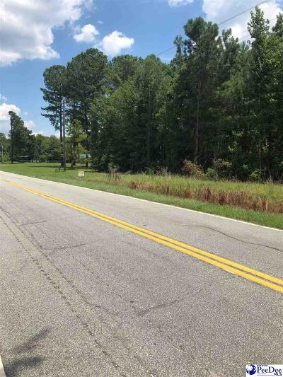Dillon County Residential Lots & Land New: Blenheim Hwy 34