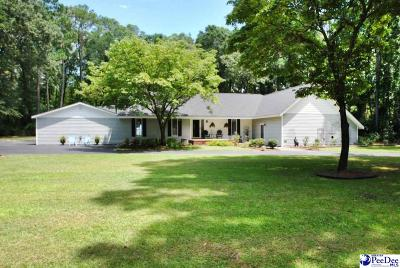 Florence Single Family Home For Sale: 4312 Byrnes Blvd