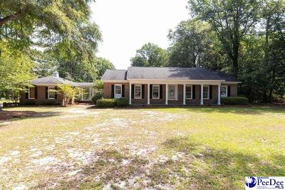 Darlington Single Family Home For Sale: 114 Alabama Drive
