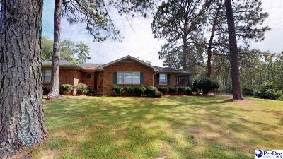 Hartsville Single Family Home For Sale: 114 Lakeview Blvd.