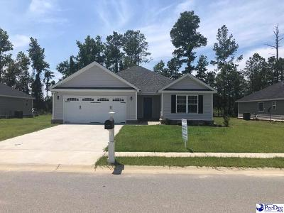 Florence Single Family Home Uc/Show For Back Up: 3133 Haven Straits Road