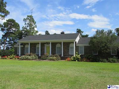 Johnsonville Single Family Home For Sale: 472 Country Club Drive