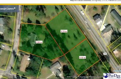 Lake City Residential Lots & Land For Sale: E Main Street