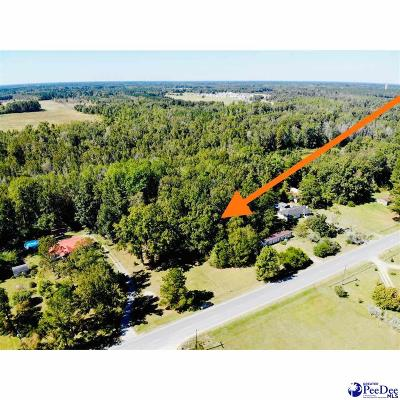 Residential Lots & Land For Sale: Highway 501