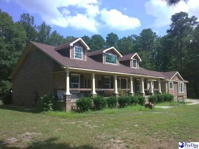 Dillon Single Family Home For Sale: 234 Riverwood Dr.