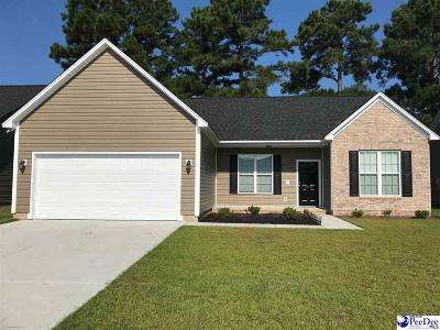 Effingham Single Family Home For Sale: 3005 Red Berry Circle