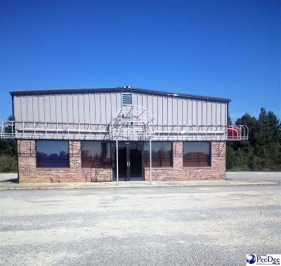 Commercial For Sale: 3111 N Highway 301