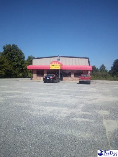 Commercial For Sale: 3105 N Highway 301