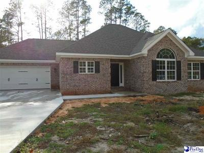 Hartsville SC Single Family Home For Sale: $240,000
