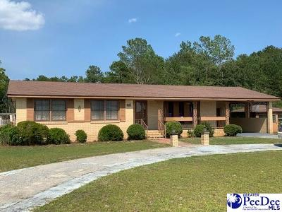 Hartsville Single Family Home For Auction: 2461 Northcutt Road