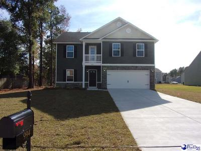 Florence SC Single Family Home For Sale: $205,440