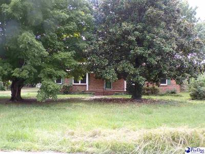 Hartsville Single Family Home For Sale: 404 S 11th St.
