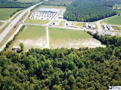 Lake City Residential Lots & Land For Sale: Hwy. 52 And Hwy. 378 By-Pass