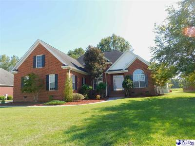 Florence Single Family Home Uc/Show For Back Up: 4184 Westwind Drive