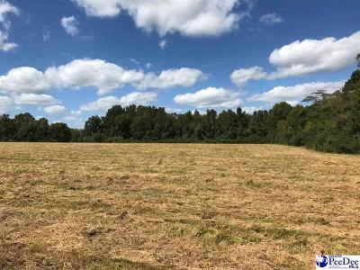 Dillon County Residential Lots & Land For Sale: Henry Street, Ext,