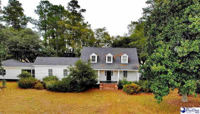 Dillon County Single Family Home For Sale: 2752 Buck Swamp Road