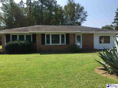 Hemingway Single Family Home For Sale: 11 W Wisteria Dr