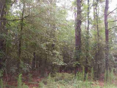 Residential Lots & Land For Sale: Lot 13 Driftwood Drive