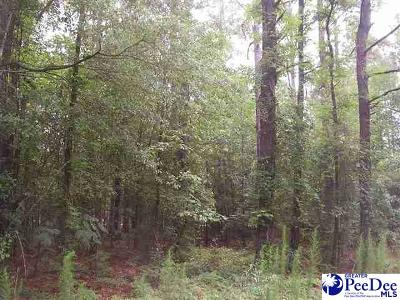 Residential Lots & Land For Sale: Lot 6 Bristlecone Drive