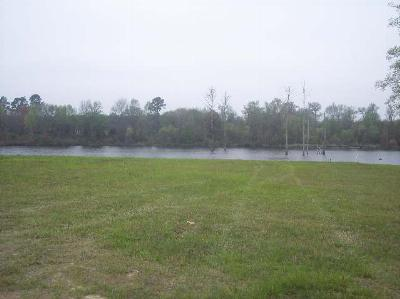 Dillon SC Residential Lots & Land Active-Extended: $44,900