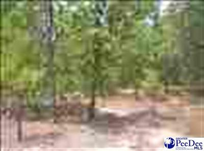 Residential Lots & Land Active-Extended: Lot 13 Country Lane