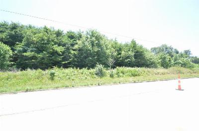 Greenville County Residential Lots & Land For Sale: S 2428 Highway 14