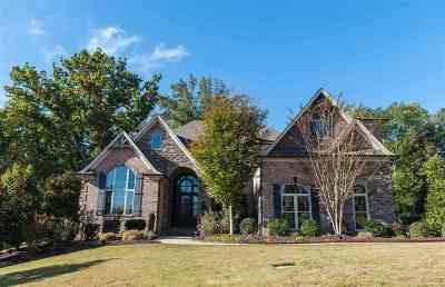 Spartanburg Single Family Home For Sale: 508 Verdae Drive