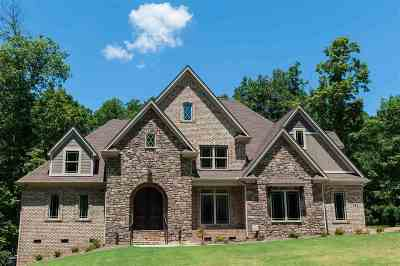 Spartanburg Single Family Home For Sale: 528 Bridlewood Ln