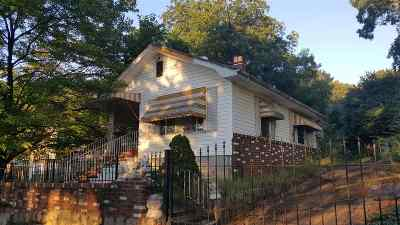 Greenville County, Spartanburg County Single Family Home For Sale: 345 Beacon Street