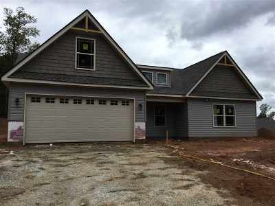 Spartanburg Single Family Home For Sale: 786 Old Canaan Road