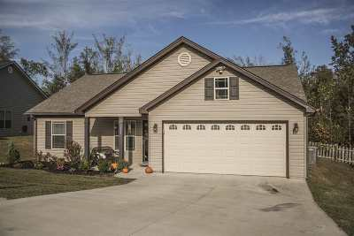 Spartanburg Single Family Home For Sale: 657 Chastine Dr