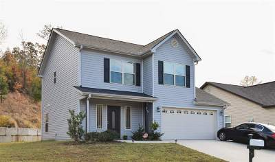 Spartanburg Single Family Home For Sale: 668 Chastine Drive