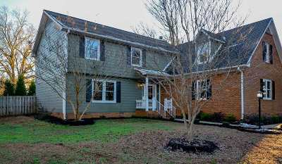 Spartanburg Single Family Home For Sale: 517 Brian Drive