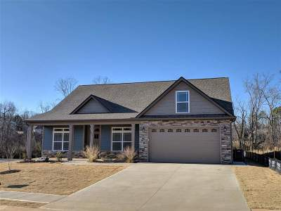 Spartanburg Single Family Home For Sale: 654 Cub Branch Drive