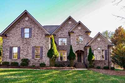 Spartanburg Single Family Home For Sale: 721 Black Wolf Run