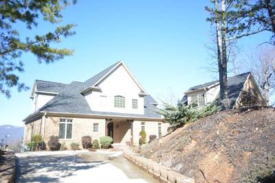 Taylors Single Family Home For Sale: N 602 Packs Mountain Ridge Road
