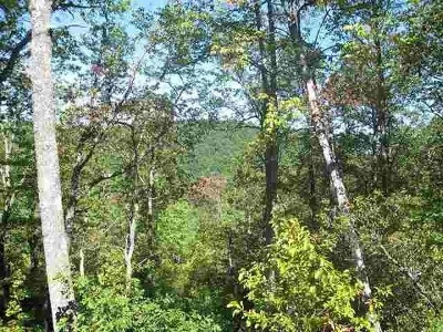 Greenville County Residential Lots & Land For Sale: 6 High Laurel Way