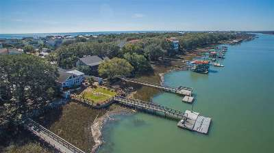 Isle Of Palms Single Family Home For Sale: 1003 Palm Boulevard