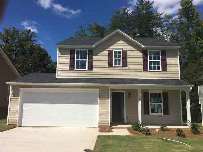 Spartanburg Single Family Home For Sale: 291 Promised Land Dr