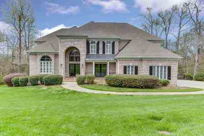 Simpsonville Single Family Home For Sale: 213 Kilgore Circle