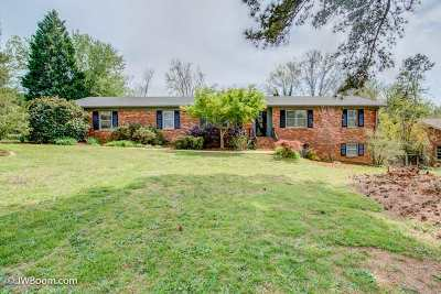 Spartanburg Single Family Home For Sale: 120 Galaxie Place