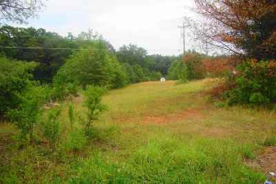 Simpsonville Residential Lots & Land For Sale: 521 Scuffletown