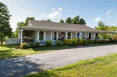 Spartanburg Single Family Home For Sale: 690 Thompson Chapel Road