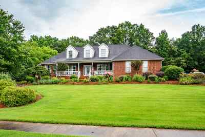 Spartanburg Single Family Home For Sale: 131 Elm View Terrace