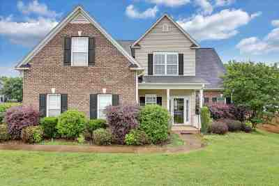 Spartanburg Single Family Home For Sale: 204 Wycliff Drive