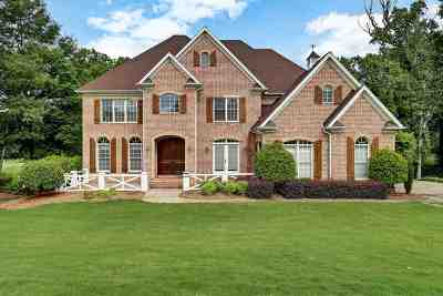 Greer Single Family Home For Sale: 394 Crepe Myrtle