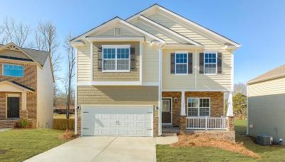 Simpsonville Single Family Home For Sale: 304 Rambling Hills Way