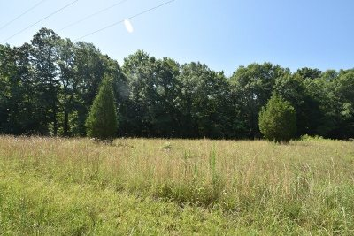 Spartanburg Residential Lots & Land For Sale: 256 Bethesda Road
