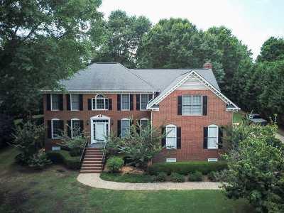 Simpsonville Single Family Home For Sale: 203 River Walk Blvd